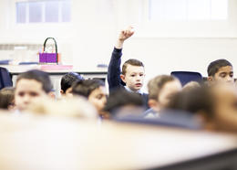 A pupil raises his hand in class