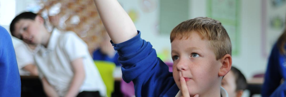 Pupil in a classroom raising his hand to ask a question.